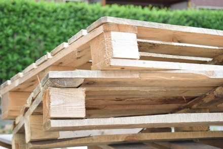 Free wooden pallets for you