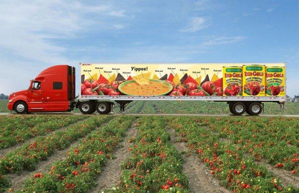 Food Transportation